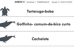 Anexo IV. Unidade didática primaria PT