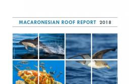 Macaronesian Roof Report