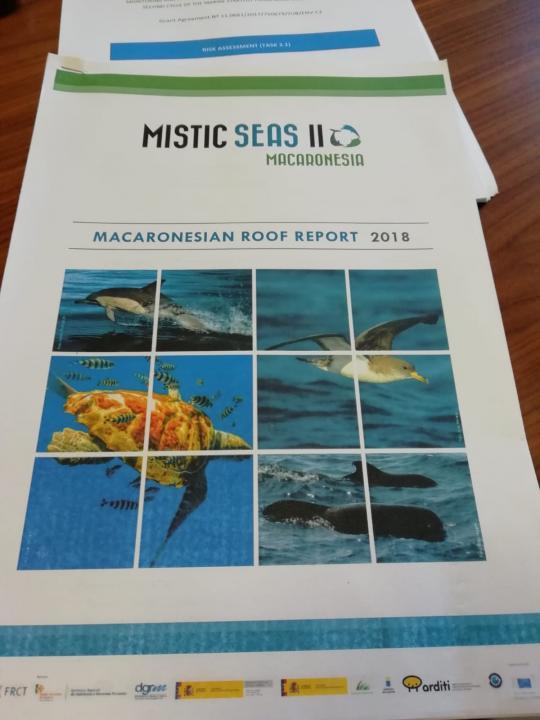 Final meeting MISTIC SEAS 2